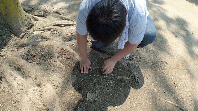 手で掘り進める。土の手触りが懐かしい。