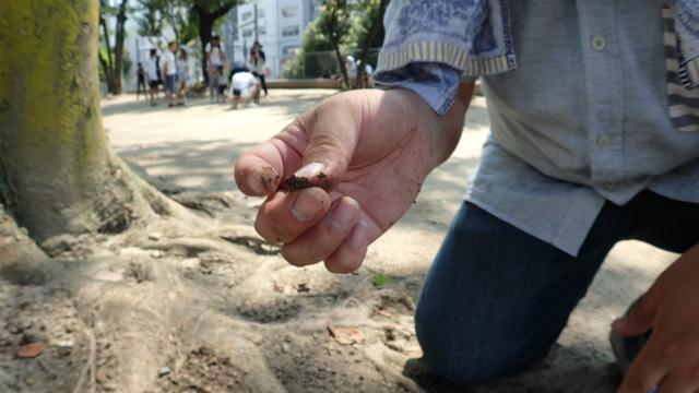 固くて全然掘れない部分をなんとかして掘って、石が取れたときはうれしい。多分、アリあるある。