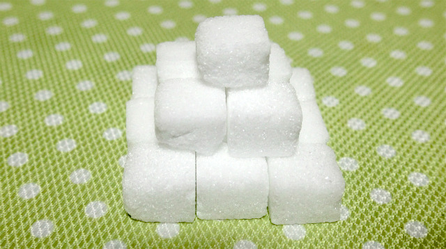 巣(自宅)に帰ってアリが好きなイメージのある角砂糖を食べてみた。