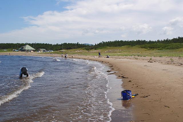 どことなく海の公園に浜のカーブが似ている!?
