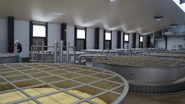 発酵室の中に並ぶタンク。ここで約10日間かけて並行複発酵を行う