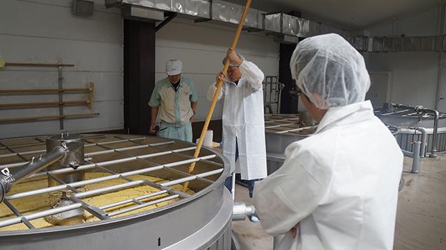 発酵中のもろみに行う櫂入れという作業