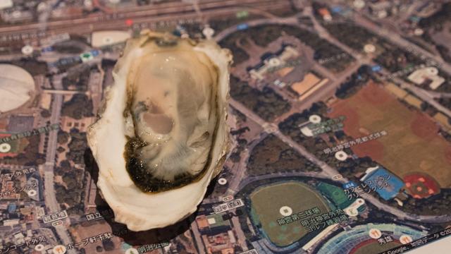 新国立競技場問題で出た「生牡蠣みたいで東京に合わない」は本当か?