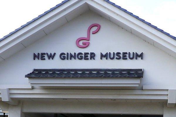 「新生姜」は英語で「NEW GINGER」ですが……そのまんま!