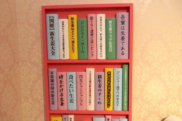 ちなみに本棚はこんな感じ「食べたい生姜」は綿矢りささんの「蹴りたい背中」のことかな……?