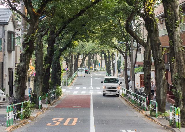 道の幅とすみ切りに加え、黒エリアには街路樹があるが