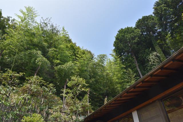 豊かな森を借景にするロケーションも成瀬的には高ポイント