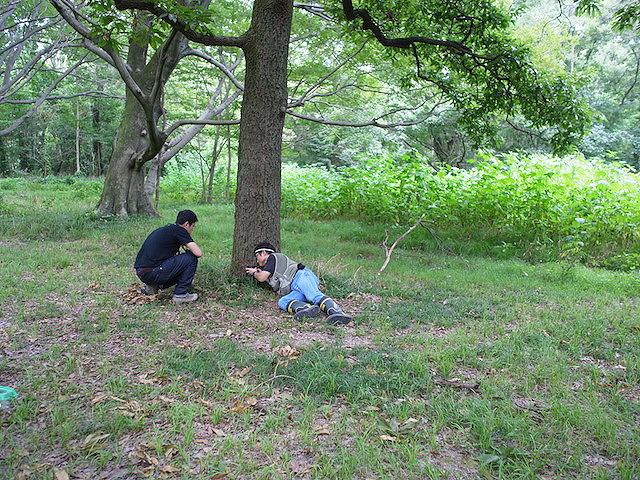 森はこんな僕らを優しく見つめているのでした。
