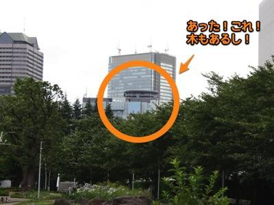 ミッドタウンに来ると木の向こうに例の建物が見えた。