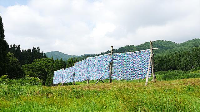 稲を干す「はさがけ」にカラフルな輪っかで作られたカーテン