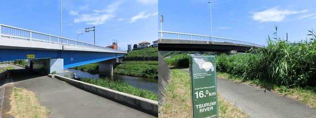 新川向橋と川向橋を越える