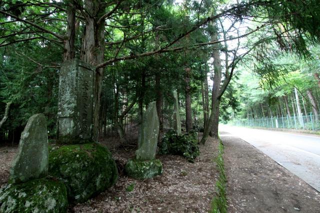 路肩には石碑が並んでおり、昔ながらの道ということが分かる