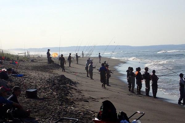 海辺へ行くとすごい数の人と竿!こんな密度で魚釣りができるものなのか。