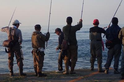 みんな釣り竿を上げて道を開けてくれる。魚を掛けた釣り人は竿のアーチをくぐって砂浜へ降りてサケを取り込む。釣り人名利に尽きる花道だ。