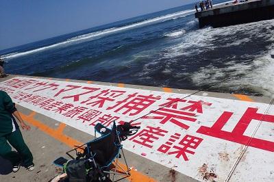 なお、堤防の河川側にはやはり「内水面サケ・マス採捕禁止」の文字。釣り人も決してそちら側では釣りをしない。