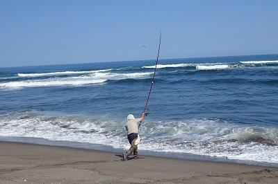 激戦区の堤防から離れたポイントには悠々と一人サケ釣りに興じるおじ様が。きっと、釣果なんてどうでもよくて、海辺で竿を振るゆったりした時間を楽しみたいのだろう。大人の余裕を感じる。