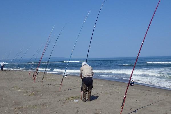と思ったらこのおっさん一人で釣竿7本も出してやがる!めちゃくちゃ本気だった。隣のおっさんも10本くらいの竿を捌いていた。こちらは魚影が薄い分、数を撃つ戦略らしい。
