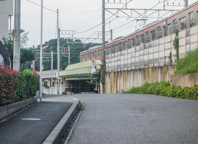 第3の鉄橋は武蔵野線のこれ。確かに一部だけ鉄橋だ。しかしここから見ると下に川がありそうにも見えるが……