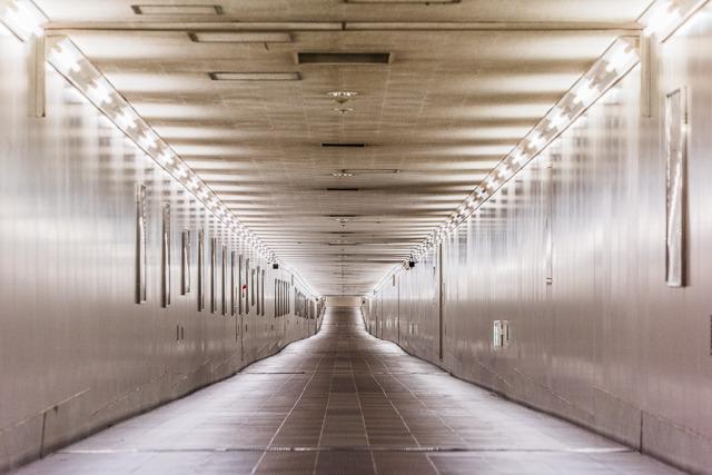 ご存じ、東成田駅名物・空港第2ビルへ続く、無人で果てしない500mの通路。