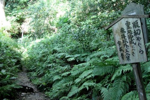追い詰められた北条氏は、ここにあるやぐら(横穴式墳墓)で切腹したという