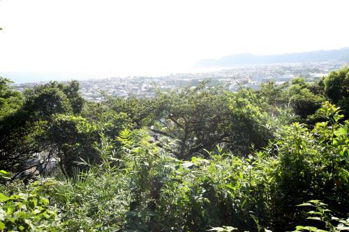 裏山に踏み込んでみれば眺めの良い展望台に到達できる