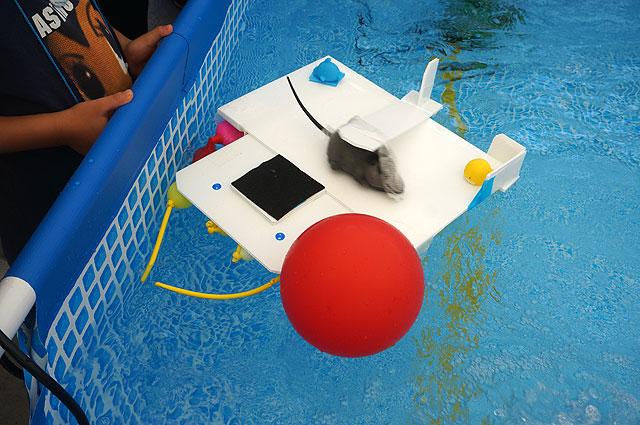 水中モーターの代わりに、風船の空気を噴射して進んでいるから(2)(ガンバ号(チームめがね))