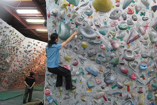 インドアジムのボルダリング。ボルダリングはロープを付けないで登る。インドアはホールド(手がかり)の場所が分かりやすい。