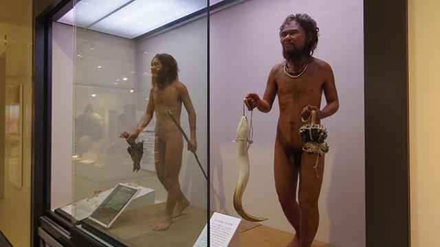 約2万年前に沖縄で生活していた港川人の精巧な復元模型