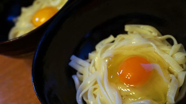 ちなみに普通の卵との味の違いは、後日卵かけうどんで1つ20円の卵と食べ比べた。食べ比べると1口目からすごさが分かる。しかし普通の卵もちゃんと普通の卵としておいしいのだ、それは間違いない