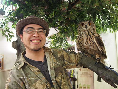 An owl that sits on your arm!