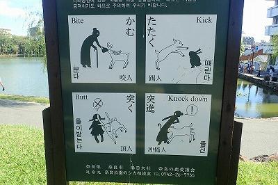 奈良公園内には鹿への注意を促す看板が。突進は英語だとノックダウンになるのか。