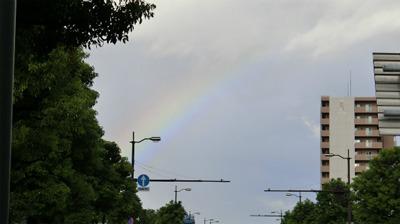 様々な色のラーメンと虹を見たので、色彩感覚が20倍になったと思う。