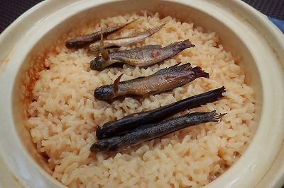 小鮎の炊き込みご飯とはかなり雰囲気の異なるビジュアル。似たようなもんなのにな。
