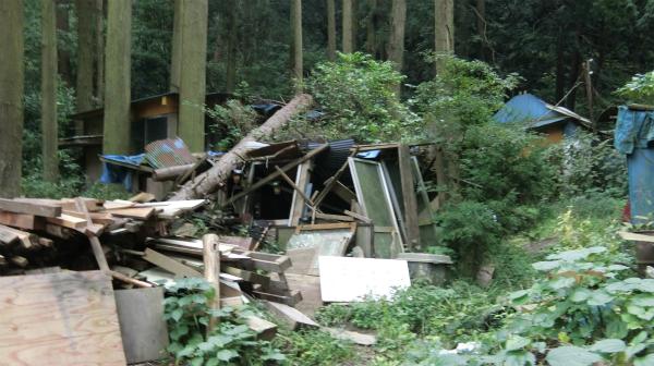 屋根も壁も崩れて、木も倒れている。