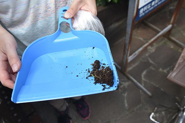 少し湿り気のある土をゲット! 小さい葉っぱや根も土器をつくるのには良いらしい。乾燥後に割れにくくなるための混和材になるのだ。