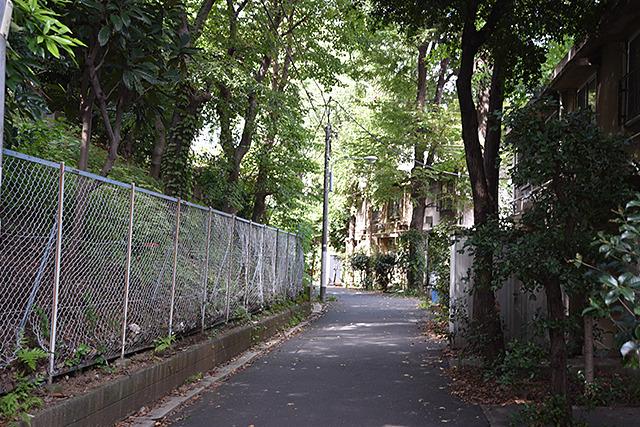 浅野キャンパスの裏側(?)から入る。人がいなくて不安。