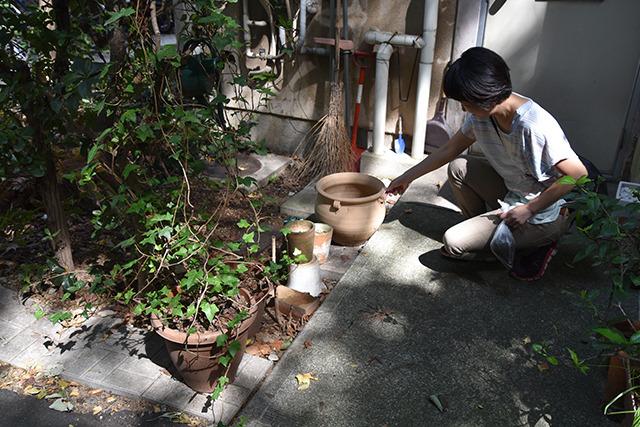 誰も住んでいなそうな古いアパートの前に弥生土器ぽいもの発見。