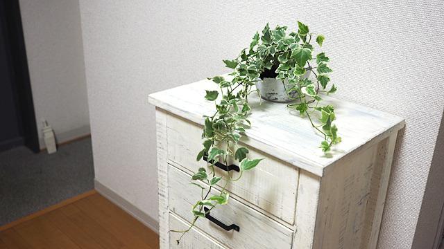 植木鉢ということにして緑を合わせたらけっこう合うかも。