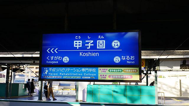 レオポンを見るために「甲子園駅」に来ました