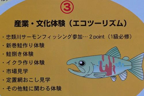 サーモンフィッシングへの参加、新巻鮭作り体験など。