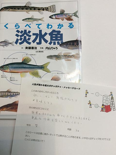 「熱帯のカラフルな魚さんだけではありません。身近な川魚を愛してみてください」