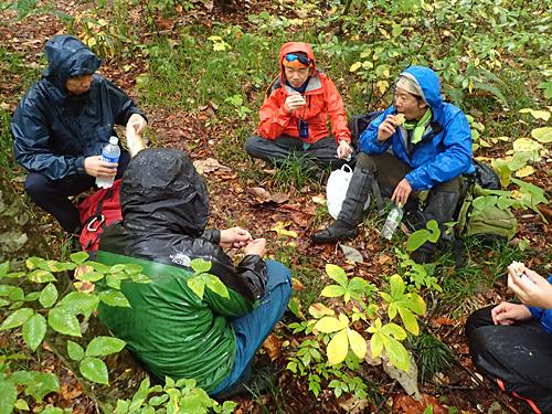 多少の雨が降っていても、野生動物のように動じないで休憩をとるメンバー達。