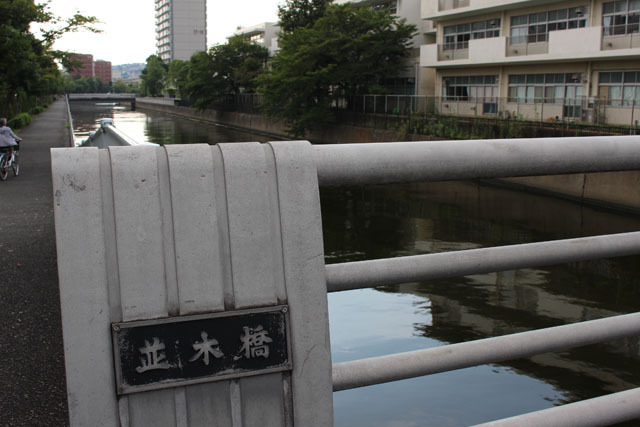 並木橋を渡らず、川に面した遊歩道へ進む