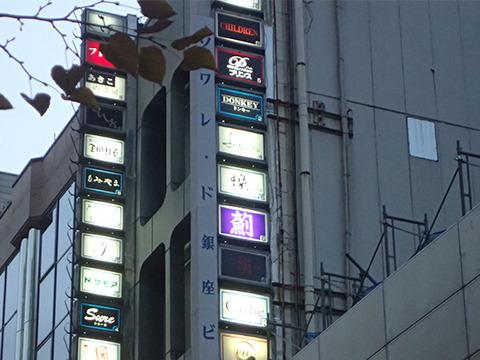 バー的な、いわゆる夜のお店が集まったビルの看板。