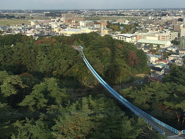 なんかすごい吊り橋が園内にある!あとで行かねば。