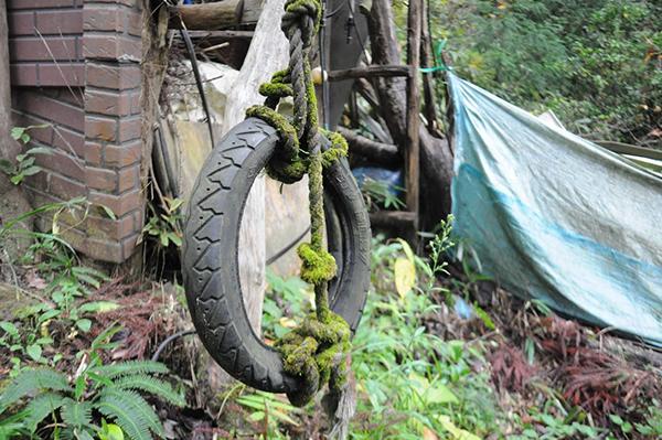 ロープの苔むし具合がカッコいい。