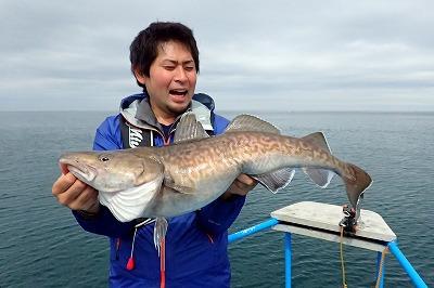 タラ(マダラ)でした!最初の一匹は嬉しかったけど、この後も延々釣れ続けて船上がタラ漁船のように。
