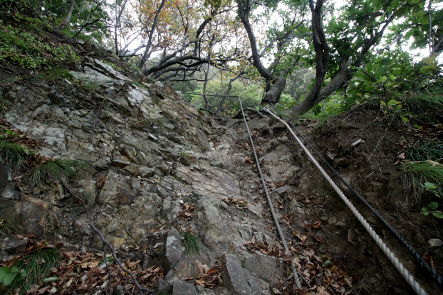 もはやロープは標準装備、岩盤むき出しの登山道を行く
