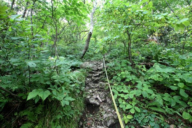 延々続く急な山道を、汗だくになりながら登る