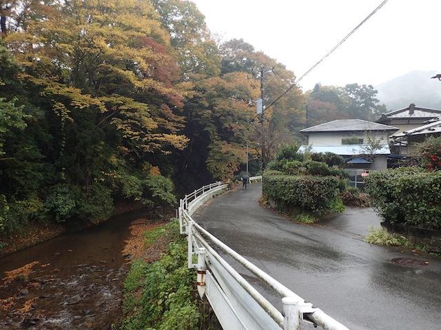 すっかり晩秋の装いを見せる谷太郎川。